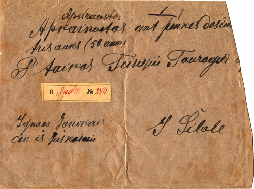 Naumiestis 1919 cancelling by a two-line cachet